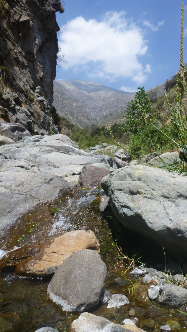 Parque-Natural-Quebrada-de-Macul-21