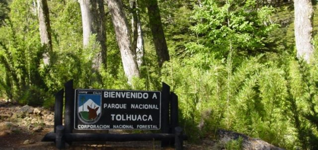 038-Parque-Nacional-Tolhuaca.-740x350