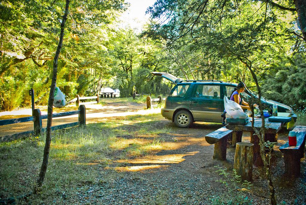Entre el 19 y 28 de Enero de 2011, fuimos de vacaciones al sur de Chile.  Primero llegamos a Puerto Octay al hospedaje de la Fuerza Aérea en el sector de Centinela, donde nos juntamos con el Ale (mi hermano) y su familia, desde ahí recorrimos Frutillar, Petrohué y Todos Los Santos, además de disfrutar el lago Llanquihue en el muelle frente al hospedaje.  El día 22 fuimos de Puerto Octay al camping del Alerce Andino del sector de Correntoso, para quedarnos una noche y comenzar el sendero de 2 a 3 días a Laguna Fría. En la mañana siguiente comenzamos el dificultoso sendero, con muchísimo barro, muchas raíces, harto subir y bajar por partes boscosas, muy húmedas y con un día muy caluroso que evaporaba visiblemente la humedad del bosque, luego de caminar más de 6.4 km. llegamos a un punto donde era imposible continuar, el sendero se hundía probablemente unos 40 cm. bajo el agua y el bosque espeso no dejaba posibilidad de cruzar, tuvimos que devolvernos.  Luego fuimos a Puerto Montt, y nos quedamos en un Hotelito del centro, al día siguiente recorrimos Puerto Montt y Angelmó, para luego ir el día 25 al otro sector del Alerce Andino, sector de Chaicas, donde el sendero de 9.5 km. que llega a la Laguna Triángulo, era muchísimo más fácil de caminar y verdaderamente hermoso, un día de caminata espectacular. Luego hicimos otro día de recorrido, por Chiloé, paseando desde Chonchi, luego a Castro, luego Quemchi y terminando en Ancud donde cenamos en un buen restaurant. Después volviéndonos hacia Santiago, pasamos por el parque nacional Tolhuaca, nos quedamos 2 noches en el camping de Termas de Tolhuaca, donde tienen una piscina termal exclusiva para la gente del camping usable a la hora y por el tiempo que uno desee. En el parque hicimos los senderos a Laguna Verde donde vimos carpinteros en el camino y la hermosa laguna. También hicimos el sendero al Salto del Malleco que va bordeando la laguna Malleco. Otro lugar más que es espectacular.