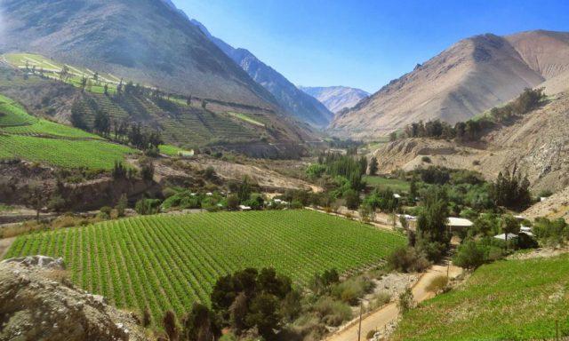 valle-del-elqui1 (1024x768)