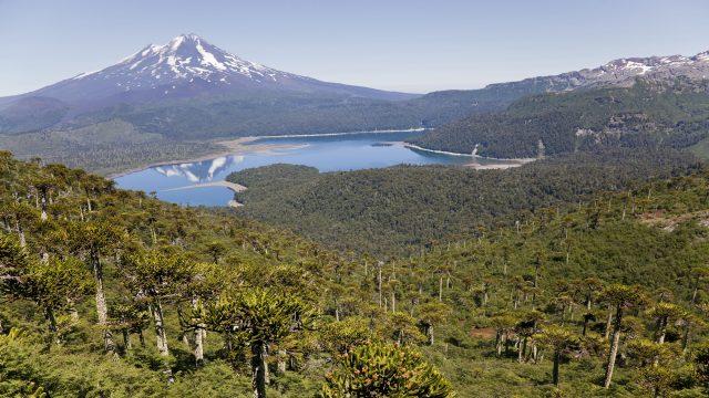 Vistas-desde-el-Parque-nacional-Conguillío-del-Volcán-Llaima-Chile