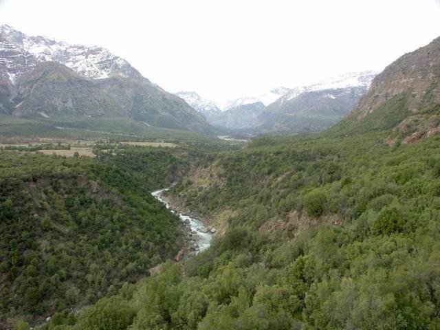 rio cipreses