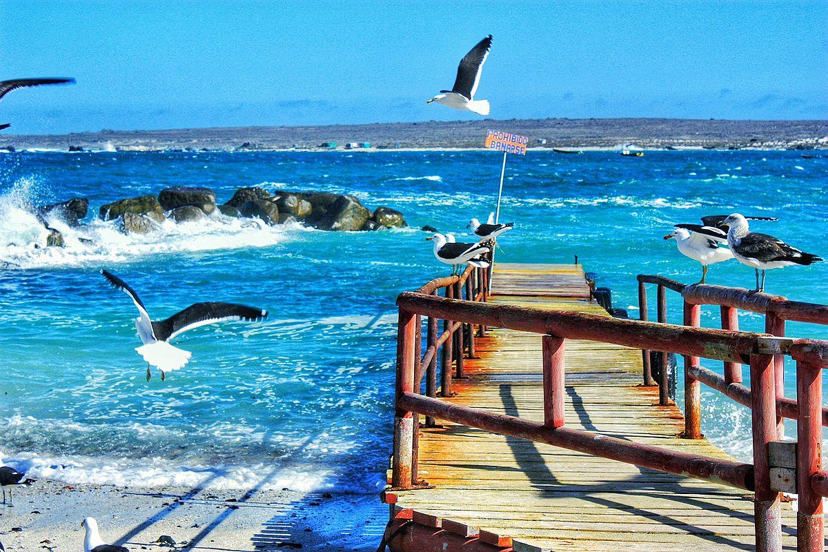 Caleta_de_Punta_de_Choros_Coquimbo._Chile.jpg
